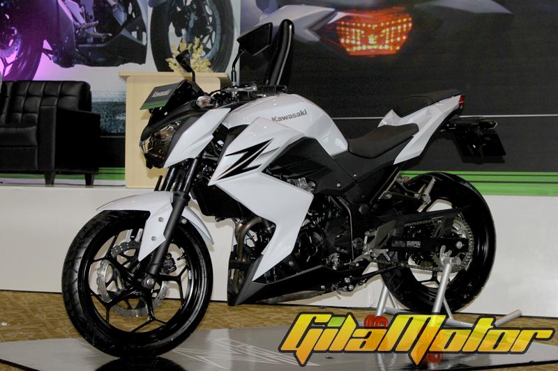Kawasaki Z250 2013 2