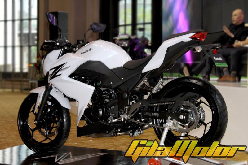 Kawasaki Z250 2013 24