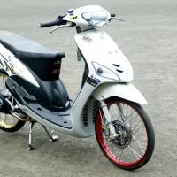 mio-lama-modif-1